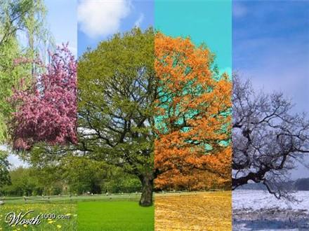 Poèmes des 4 saisons, Antonio Vivaldi